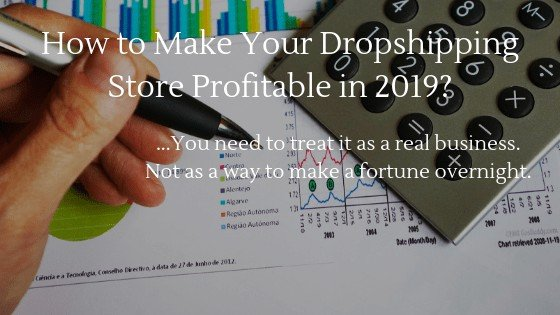 Learn how to make your dropshipping store profitable in 2020
