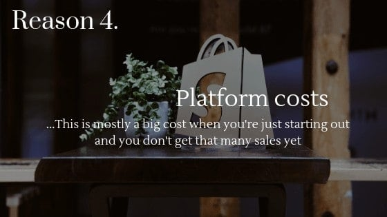 Lower Dropshipping Profits reason 4: Platform costs are a big cost when you're just starting out