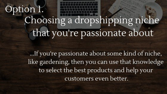 Find the best dropshipping niche in 2020 option 1: Choosing a dropshipping niche that you're passionate about