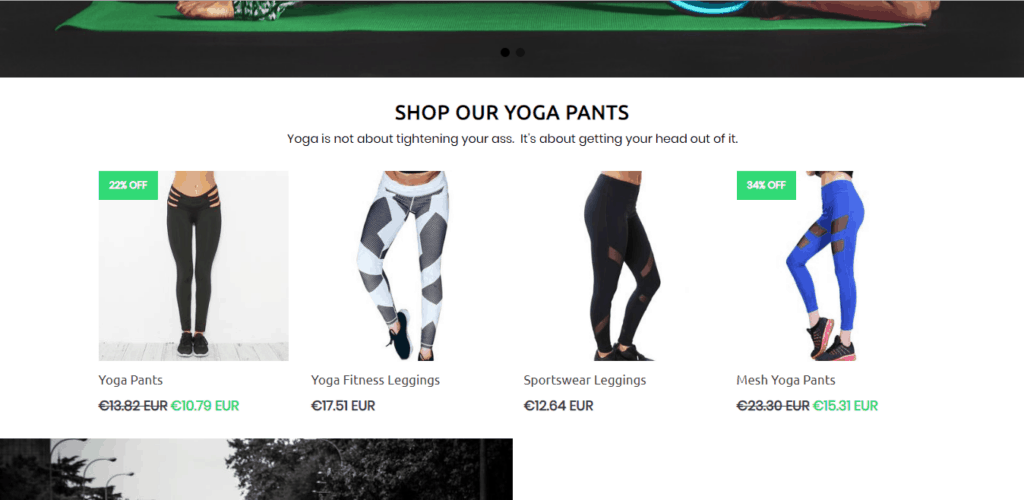 The best Shopify dropshipping themes: Booster Theme demo store 2