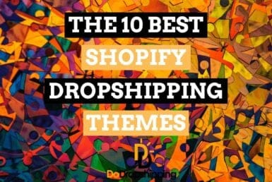 Learn what the best Shopfiy Dropshipping themes in 2020 are!