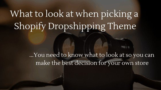 learn what to look at when picking a shopify dropshipping theme