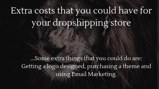 Can you start dropshipping without money in 2021: Extra costs that you could have for your dropshipping store
