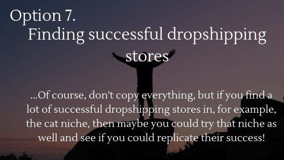 Find the best dropshipping niche in 2020 option 7: Finding successful dropshipping stores