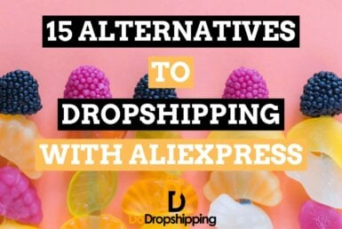 The 15 Best Alternatives to Dropshipping With AliExpress in 2021!
