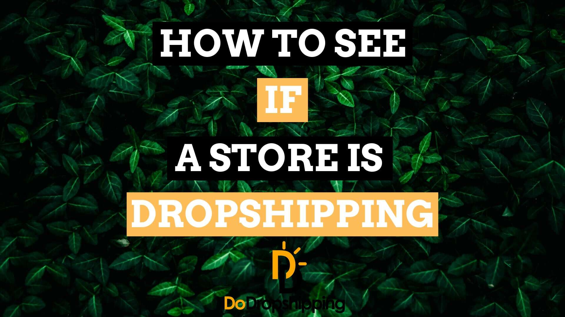 How to See If an Online (Shopify) Store Is Dropshipping?