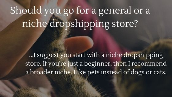 General vs Niche Dropshipping store: Which one should you go for in 2020?