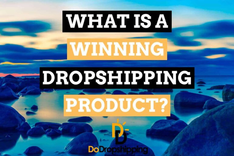 What Is a Winning Dropshipping Product + Winning Dropshipping Product Examples