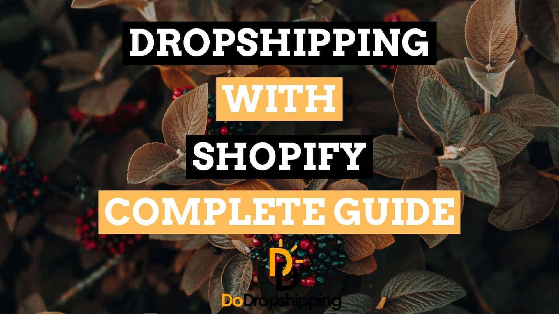 Shopify Dropshipping Complete Guide 2019: Create Your Own Store