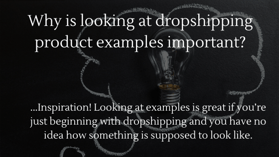 Why Is Looking at Dropshipping Product Examples Important? One word? Inspiration!