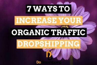 SEO for Dropshipping Stores | Get Free Traffic Now!