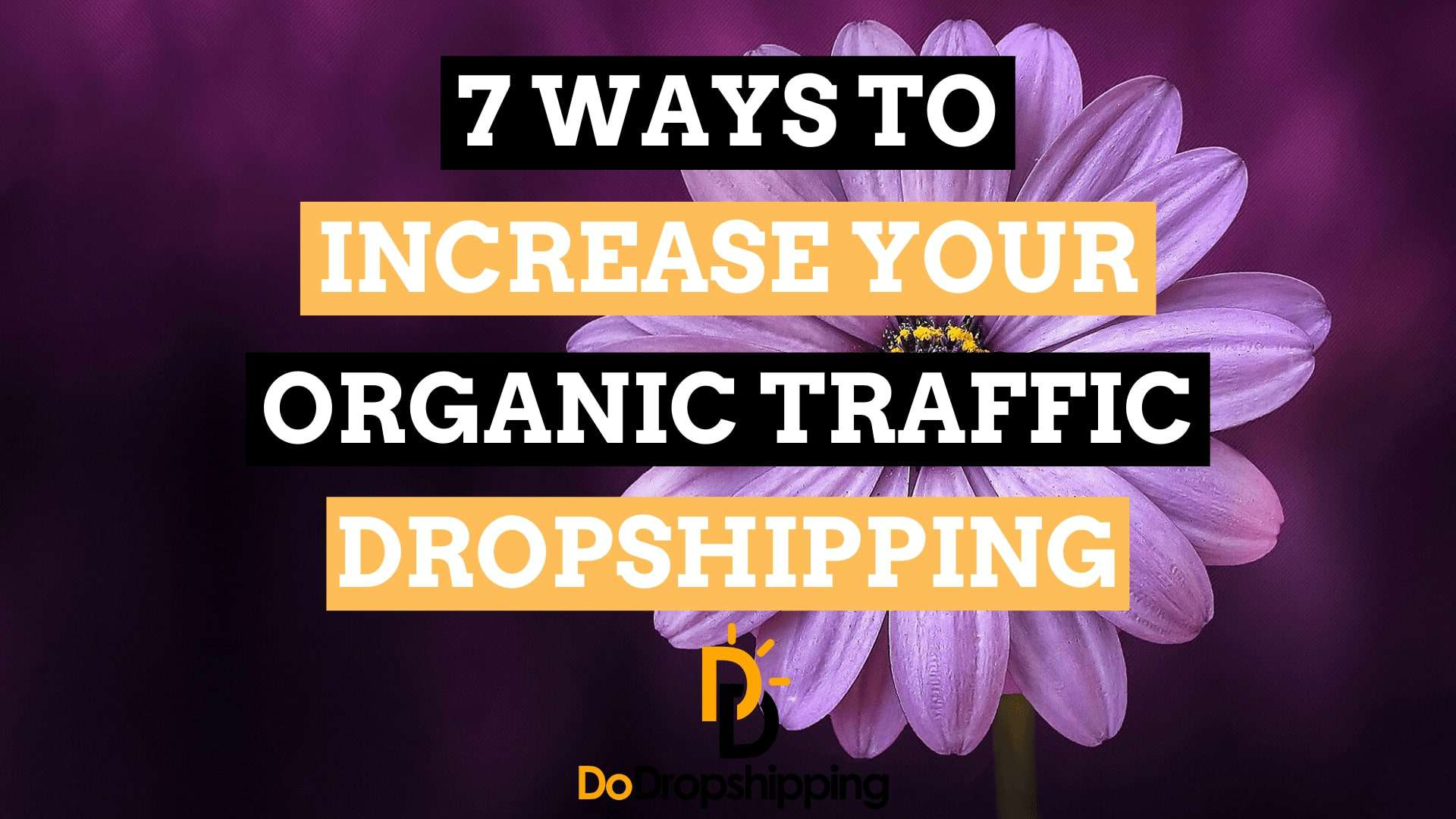 SEO for Dropshipping Stores: 7 Ways to Increase Your Traffic