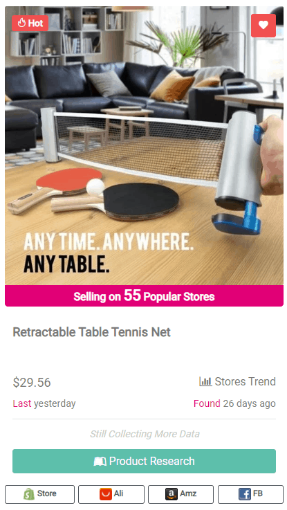 Winning Dropshipping Product Example: Retractable Table Tennis Net