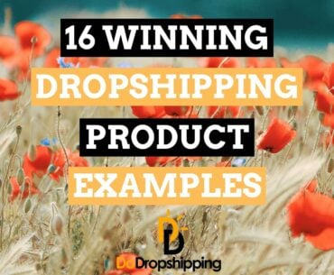 Winning Dropshipping Product Examples | Get Inspiration in 2021!