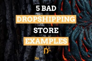 5 Bad Dropshipping Store Examples & What They Can Improve | Inspiration