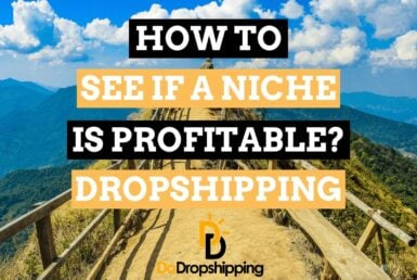 How to Find out If a Dropshipping Niche Could Be Profitable in 2021?