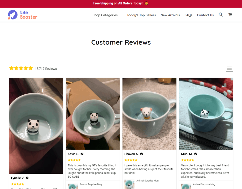 Example of an ecommerce store's review page