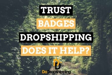 Trust Badges for Dropshipping Stores: Doe Is It Work in 2021?