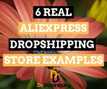 6 Real AliExpress Dropshipping Store Examples in 2021 | Inspiration