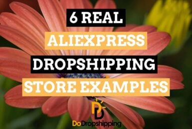 6 Real AliExpress Dropshipping Store Examples in 2020 | Inspiration