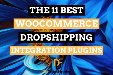 The 11 Best WooCommerce Dropshipping Integration Plugins in 2021!