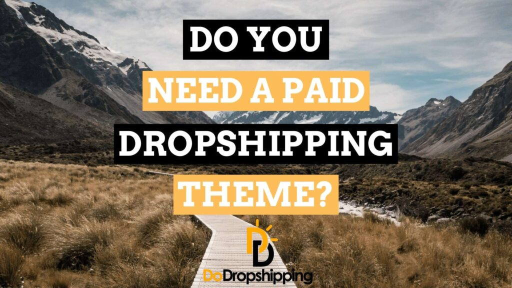 Do You Need a Paid Dropshipping Theme? or Is a Free Theme Ok in 2020?