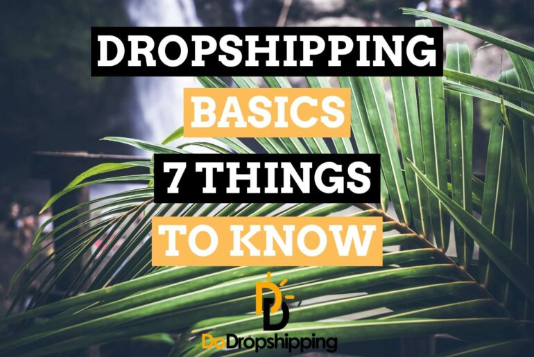 Dropshipping Basics: 7 Things to Know as a Dropshipping Beginner in 2020!