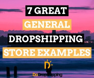 7 Great General Dropshipping Store Examples | Inspiration