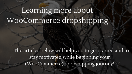 WooCommerce Dropshipping in 2020: Learning more about WooCommerce Dropshipping!