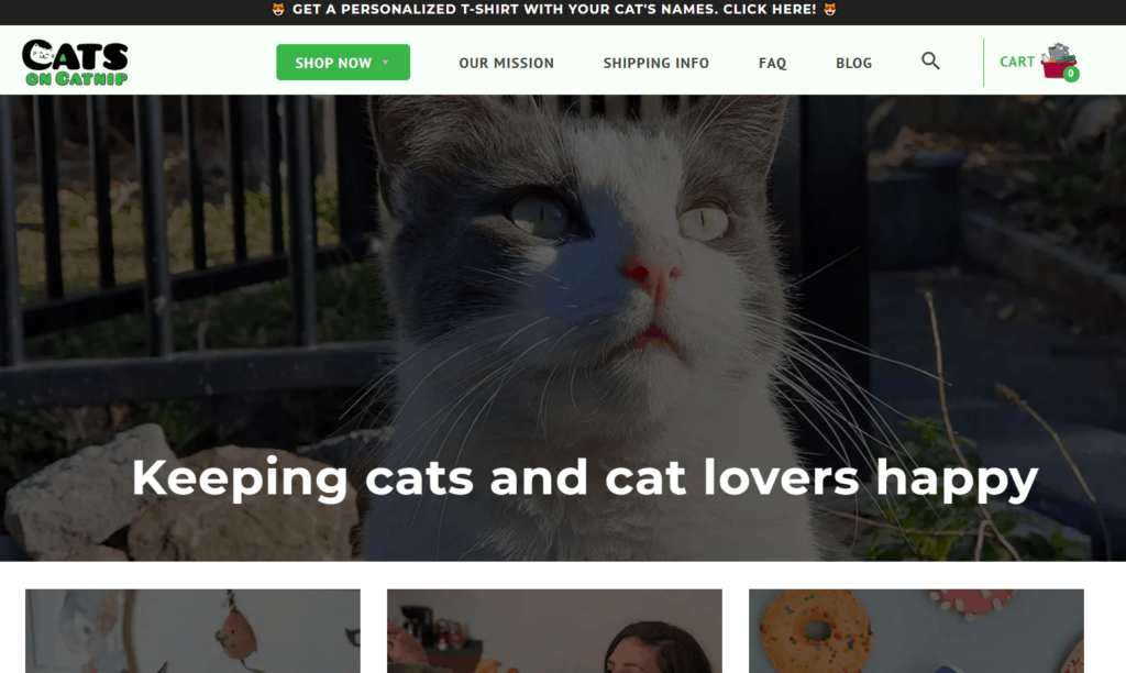 Pet Niche Dropshipping Store Examples: Cats on Catnip