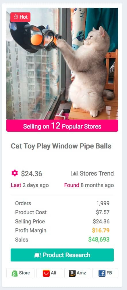 Pet Niche Dropshipping Product Examples: Cat window toy