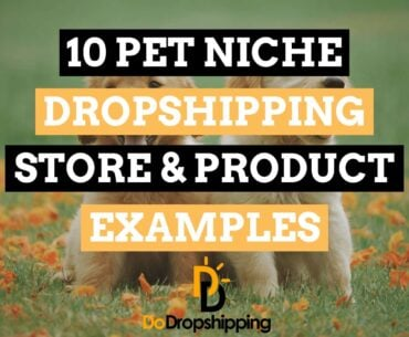 10 Pet Niche Dropshipping Store & Product Examples in 2021!