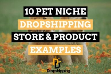 10 Pet Niche Dropshipping Store & Product Examples in 2020!