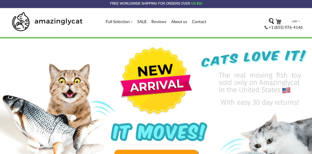 Pet Niche Dropshipping Store Examples: Amazingly Cats