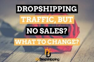 Shopify Dropshipping: Traffic, but No Sales? What to Change?