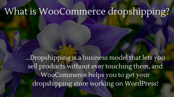 How to Open a WooCommerce Dropshipping Store: What is WooCommerce dropshipping?