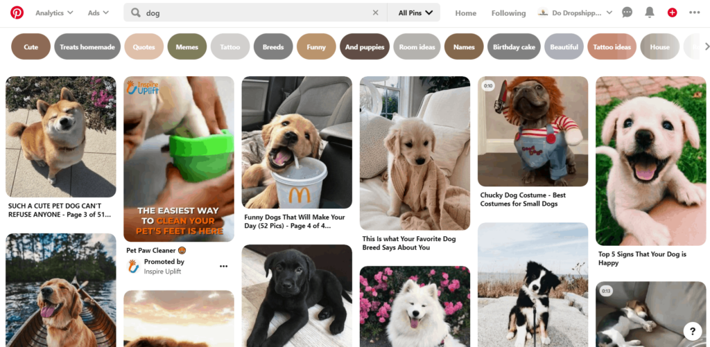 Free dropshipping sites Pinterest