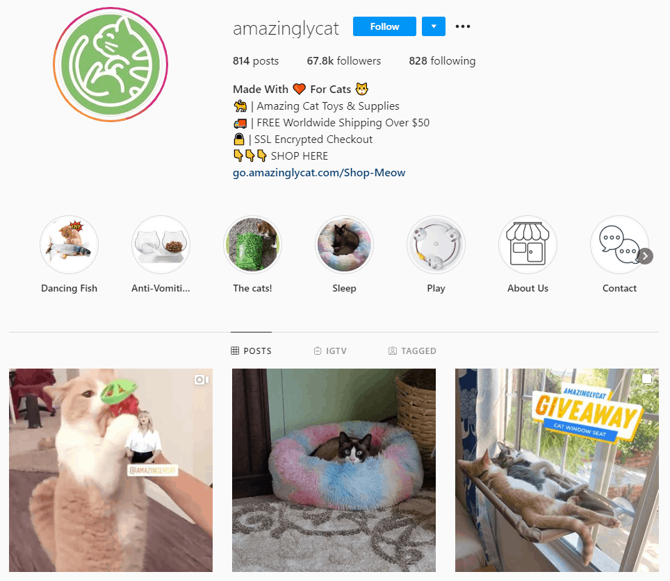 Dropshipping Instagram account example: Amazingly Cat