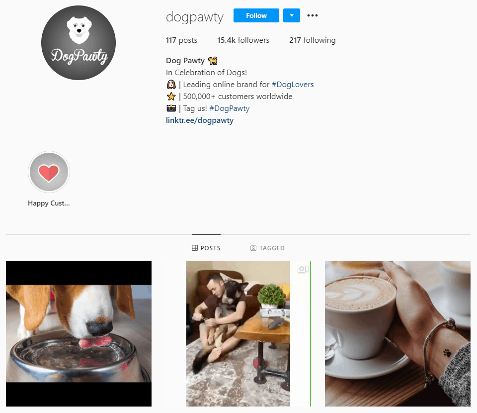 Dropshipping Instagram account example: Dogpawty