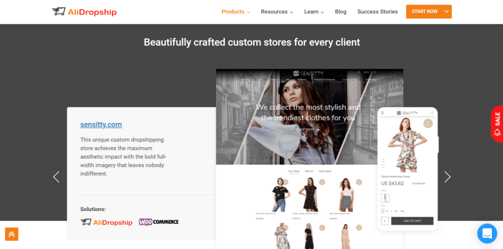 AliDropship custom stores