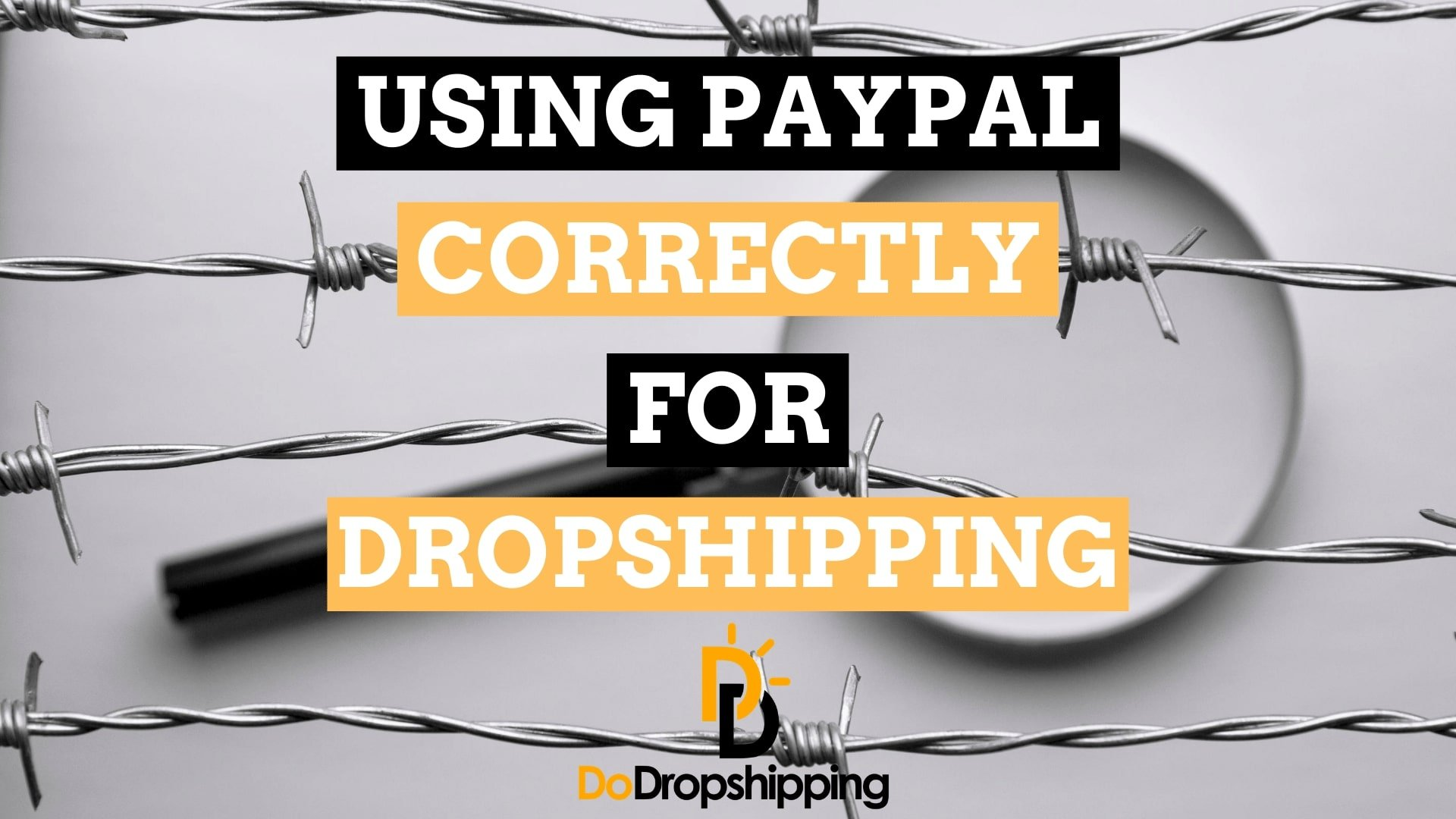 Using PayPal for Dropshipping: How to Not Get Banned in 2021