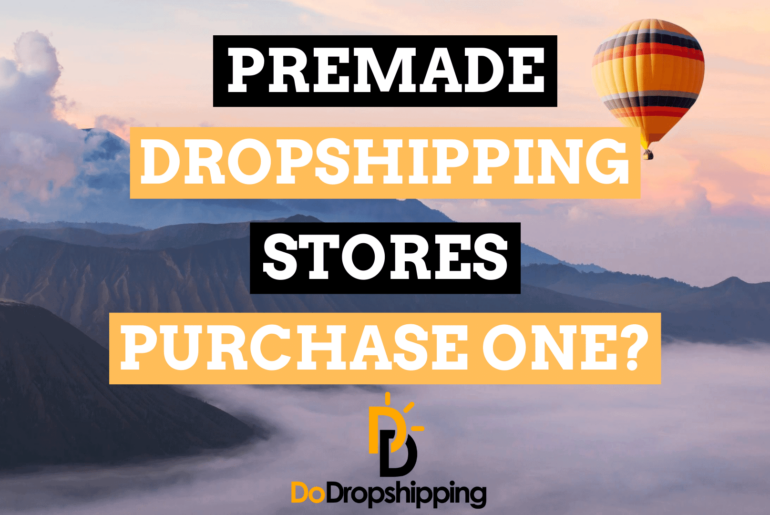 Premade Dropshipping Stores: Purchase One or Build Yourself?