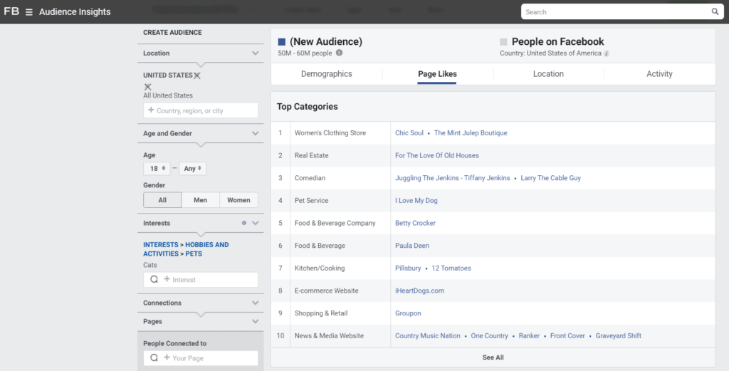 Facebook Audience Insights Page Likes example