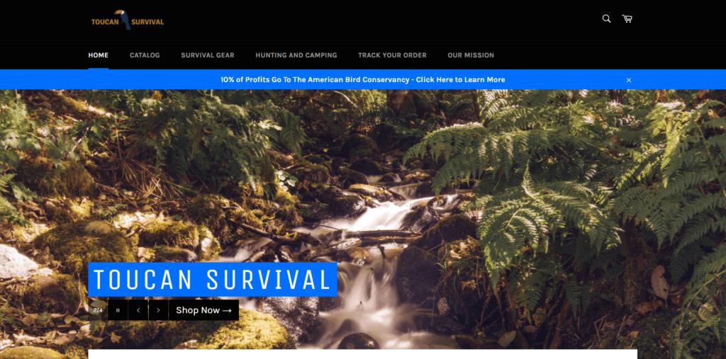 Toucan Survival AliExpress dropshipping store example