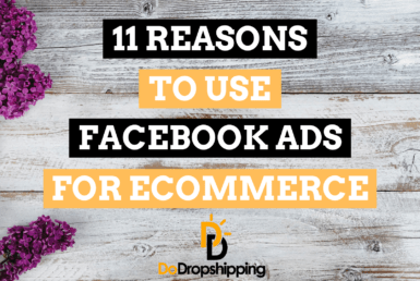 11 Reasons to Use Facebook Ads for Your Ecommerce Store