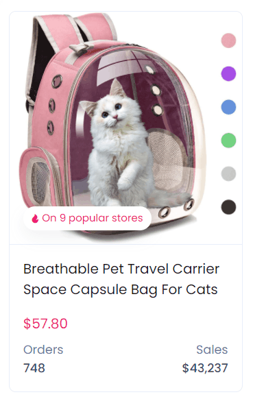 Product example - a pet travel carrier