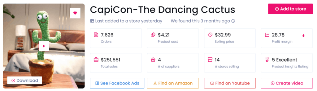 Low-ticket dropshipping product example the dancing cactus