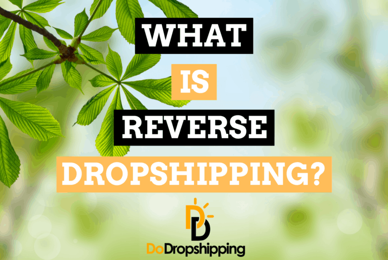 What Is Reverse Dropshipping? (And Should You Do It?)