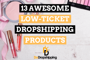 13 Awesome Low-Ticket Dropshipping Product Examples